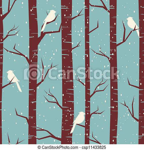björk, skog, vinter - csp11433825
