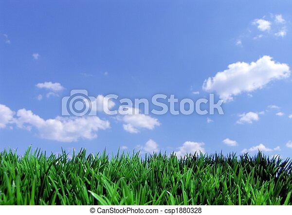 blåttsky, gräs, grön - csp1880328