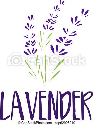 lavender., abstrakt, illustration, vektor, design, mall, logo, ikon - csp62995019