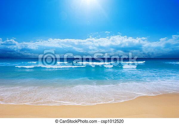 strand, paradis - csp1012520