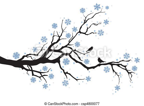 träd vinter, filial - csp4800077