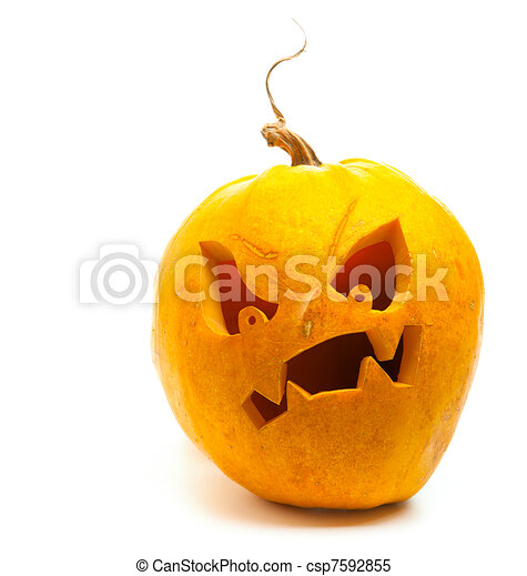 vit, halloween, isolerat, bakgrund, pumpa - csp7592855